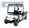 D-Line DV-2XGL Electrocar voor openbare weg