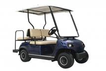 Golfcarts für Personentransport 2, 4, 6, 8, 11 und 16-Sitzer